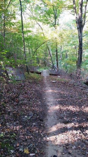 Wood bridge over log on Advanced Trail 1