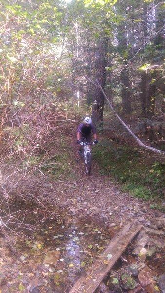 Creek crossing on Trail 257C