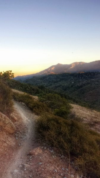 Mt. Tamalpais in the distance, Wagonwheel Trail section (facing SE or counter-clockwise direction)