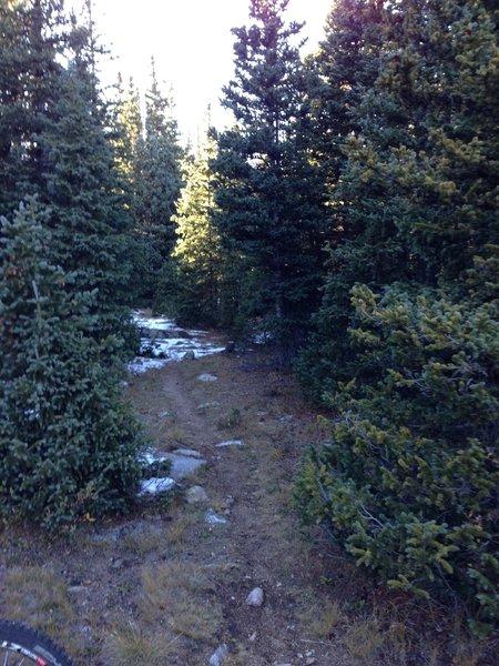 Sometimes faint trail- Little Raven West