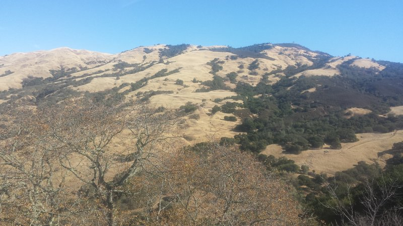 Looking east towards Mt Diablo from Wall Point Road