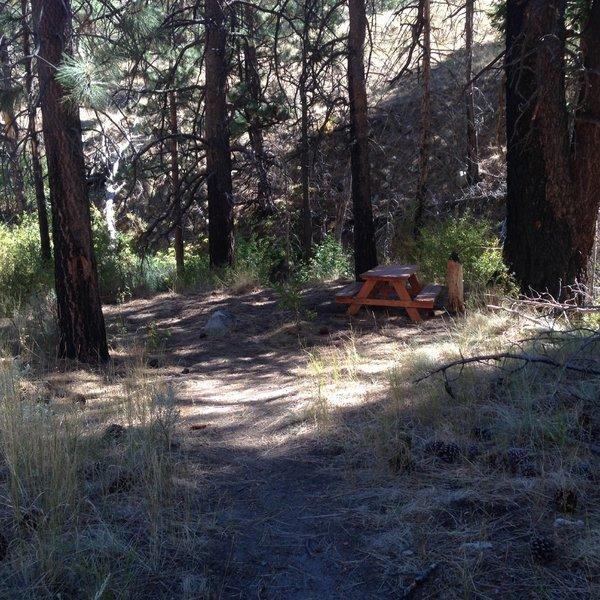Picnic table at Ash Creek