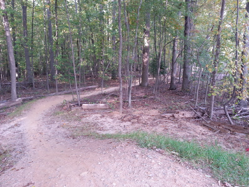 Start of the pumps and jumps section