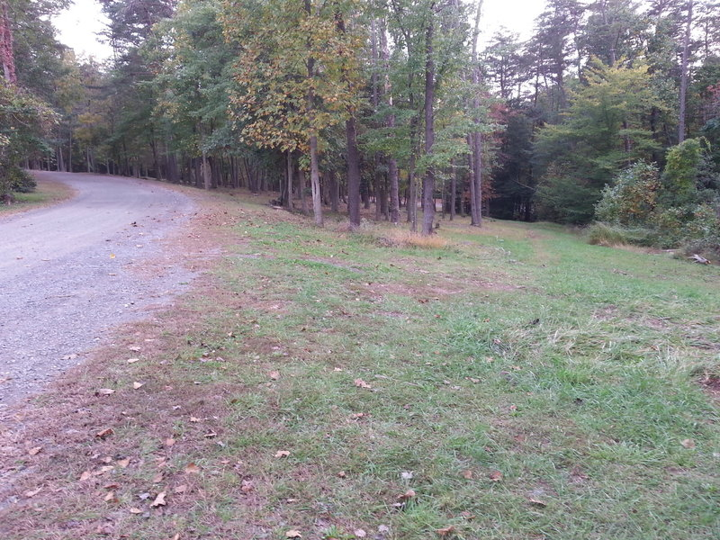 Looking away from the skate park, you can see a faint trail off to the right, you can follow this down or the gravel road