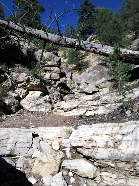 Believe it or not, this is a part of Cottonwood Trail. Fun for tech-loving riders and hike-a-bike for more timid riders.