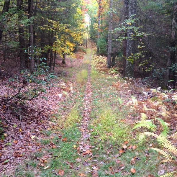 Old Narrows Trail.