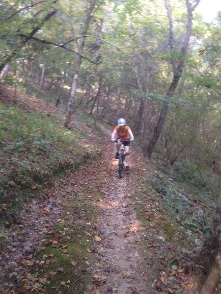 Sylaward Trail