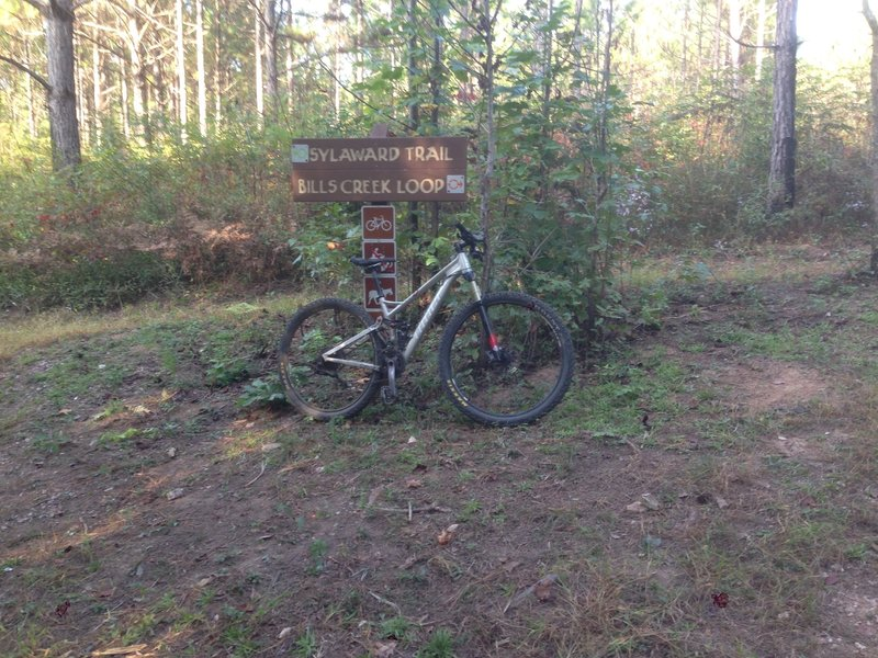 Trailhead sign.  Keep right to take Bills Creek Loop and left to continue down the main trail.