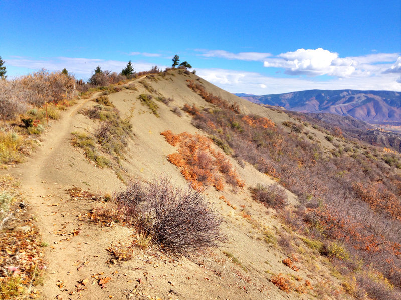 Lots of spots like this as you traverse across the top of the Rim Trail
