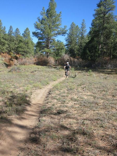 Riding the Mavericks Trail.
