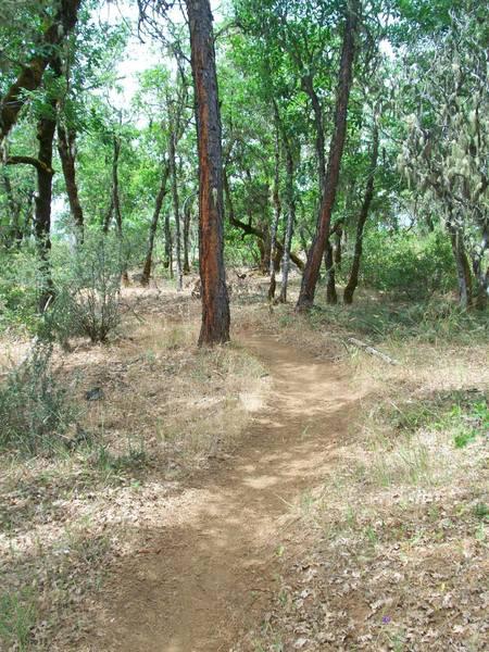 Garden Gulch Trail