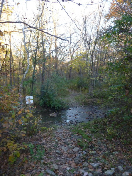Second creek crossing on Kelley Branch Trail
