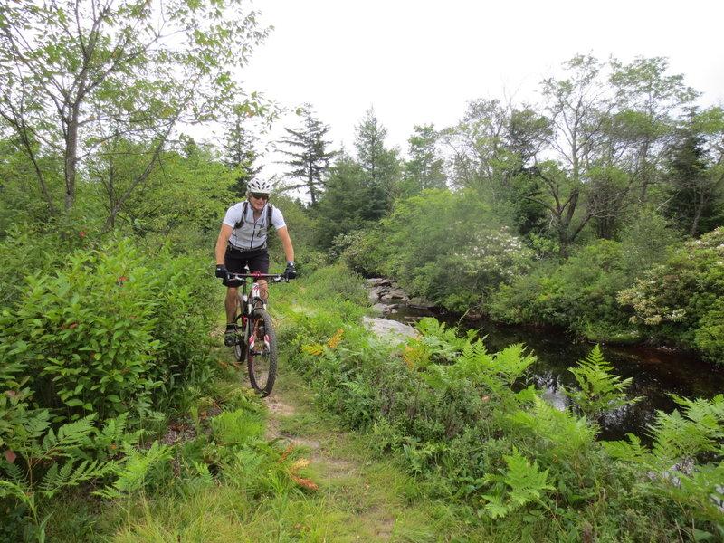 Along Yellow Creek on Rock Shocks Trail