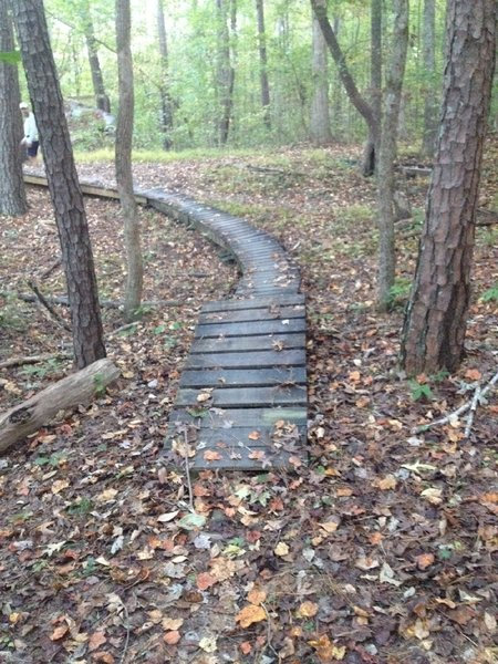 One of several man made challenges on Turtle Back Spur.  Ride-a-rounds are available.