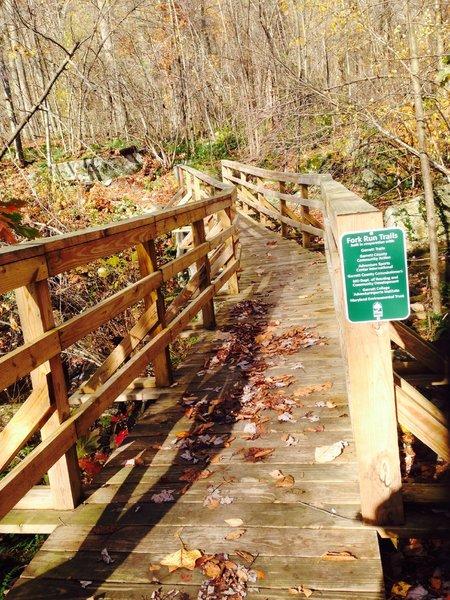 The bridge over Fork Run