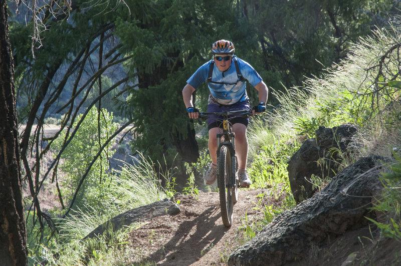 Trail team on South Side Trail