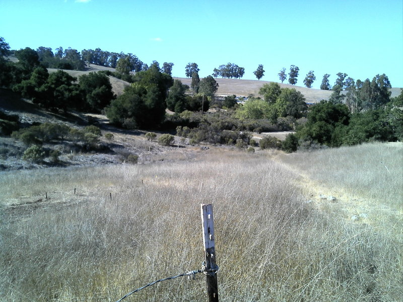 After the start looking back towards the Arastradero Loop trailhead.