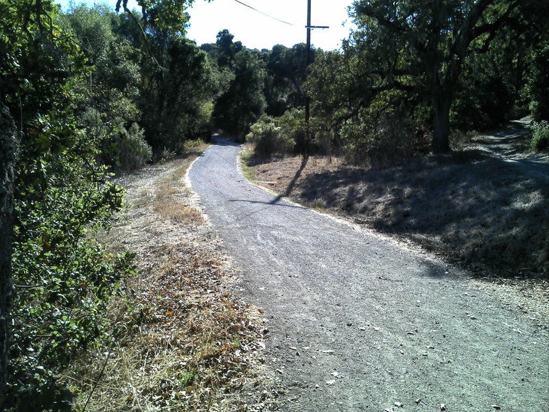 Wide open trail by a small lake. On Arastradero