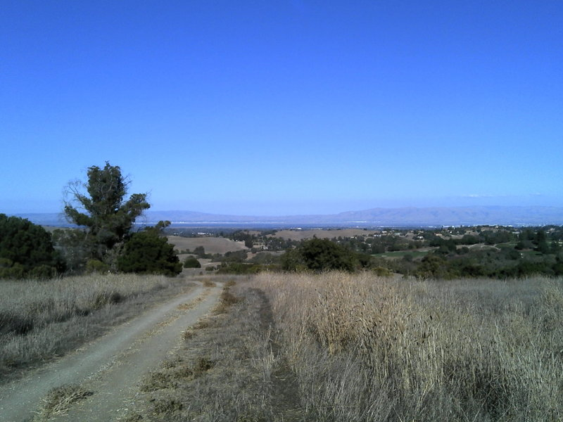 The view from the top of the Arastradero Loop!! After here its down hill, watch for peds and horses!