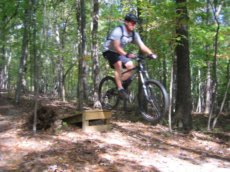 A small wooden jump on the Upper Section - Intermediate trail