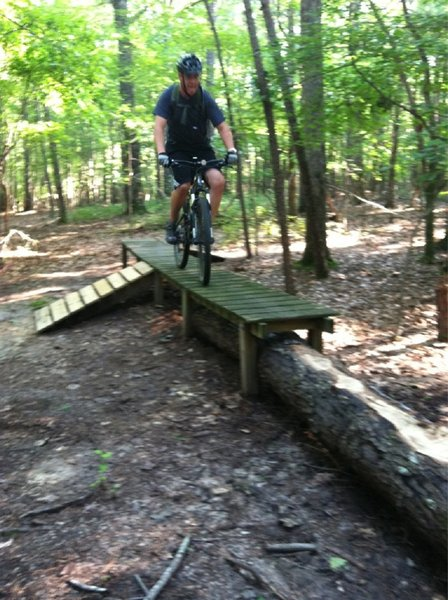 Ladder bridge with log skinny