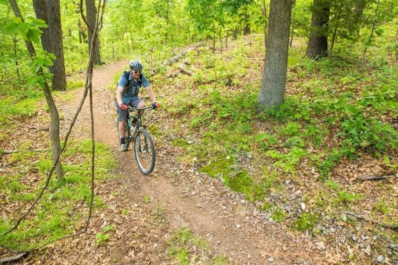 Keeping an eye on this hand-cut singletrack!  On Dutton Hollow Loop