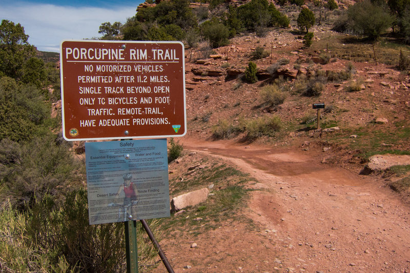 Starting up the classic Porcupine Rim route from the water tanks.