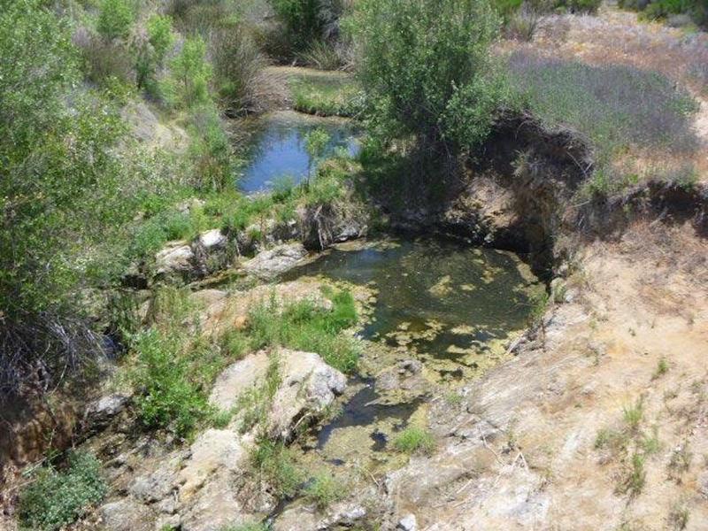 View of pond under bridge crossing.