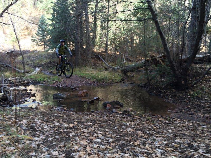 One of many creek crossings on Winsor Trail