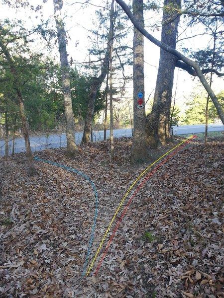 Beginning/Ending Blue Loop trail junction near side of the road parking.