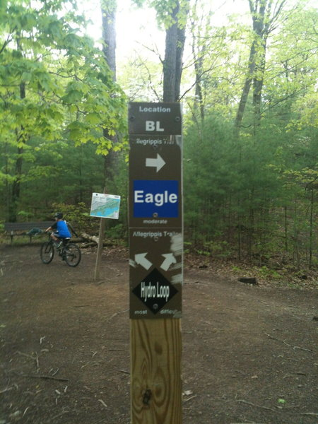 The intersection of Hydro Loop, Eagle and Osprey is a good spot to sit and figure out what's next.
