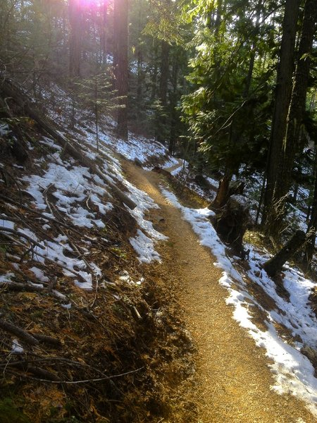 Moscow Mountain Headwaters on a frozen November Day