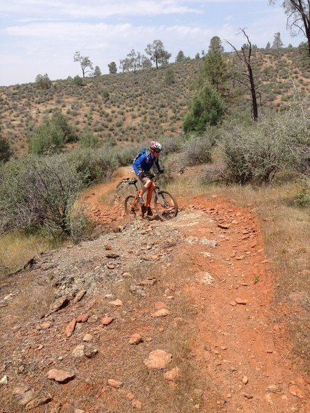 Curtis romping at Red Hills, getting up an easier rocky singletrack section