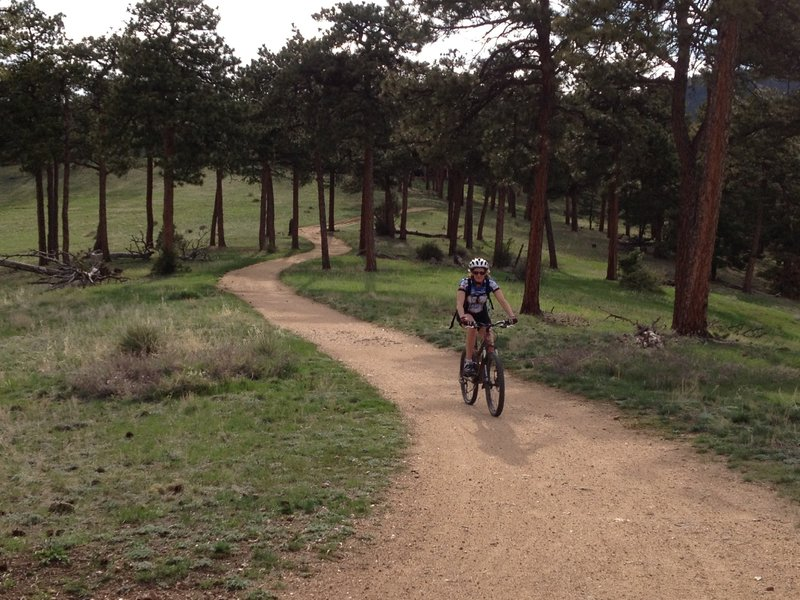The trail is smooth and wide through the trees to finish the Canyon loop.