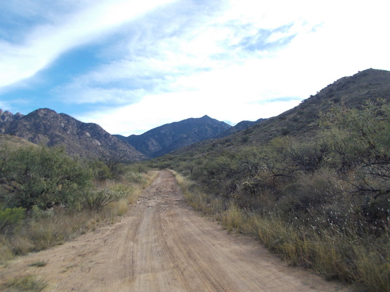 Heading up in to the hills.