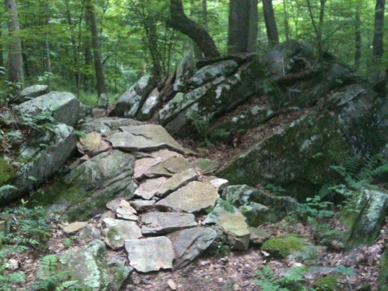 Rock garden on Little Moe's