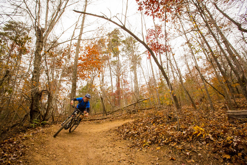 Sulphur Springs Trail has berms!
