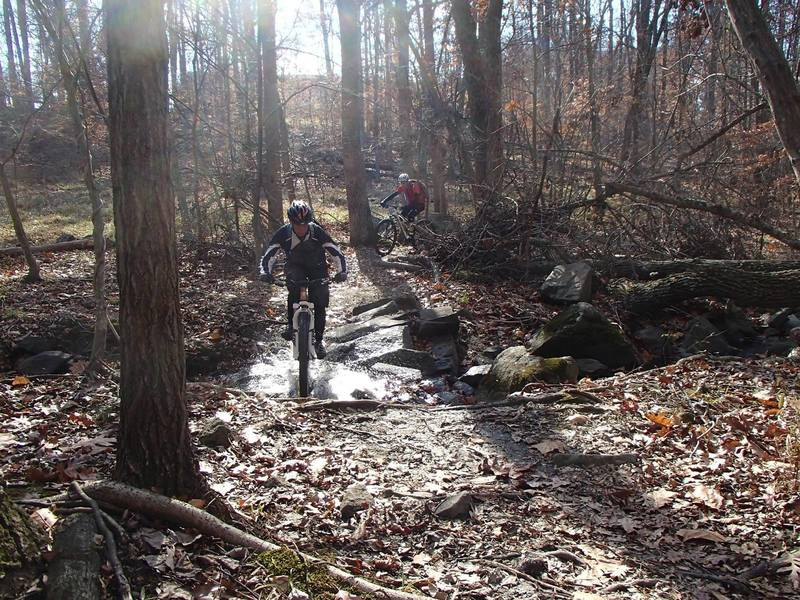 """Stream crossing in the """"Devil's Horns"""" section of Pickall Trail"""