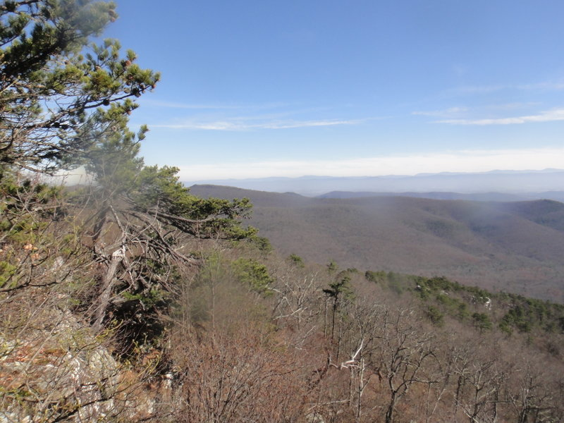 Looking northeast from North Mountain Trail