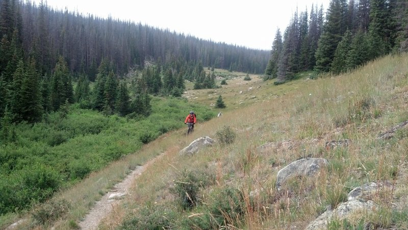 Rider exiting high meadow