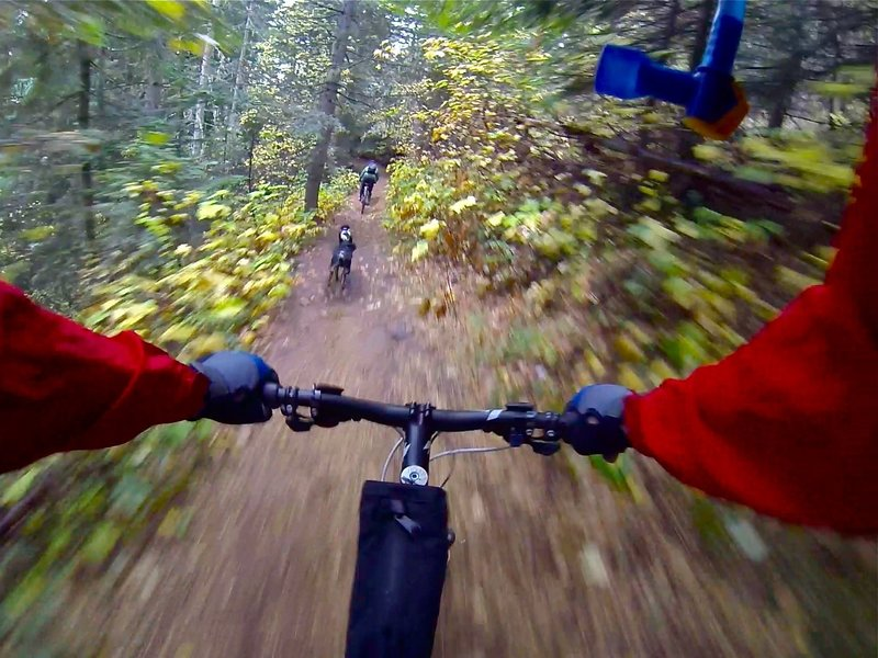 Rolling Down Trail D!