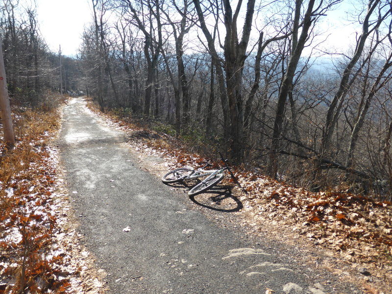 The up-up-uphill in late fall on Overlook Mtn