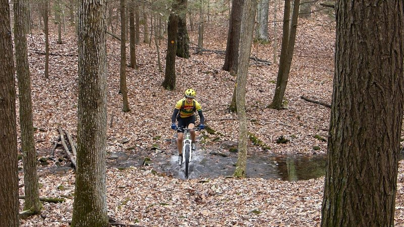 Splashing in the creek where Wintergreen meets Quilty.