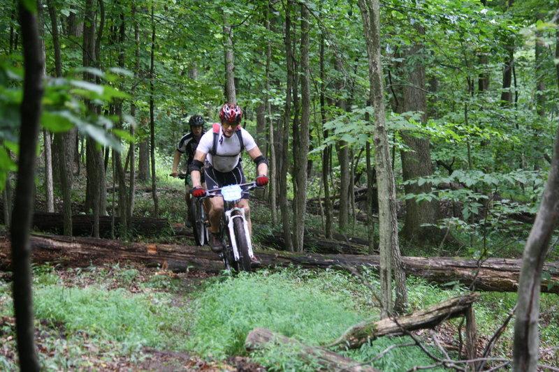 River Trail log piles