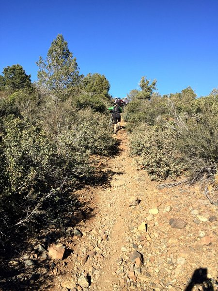Challenging uphills on Ranch Trail #62