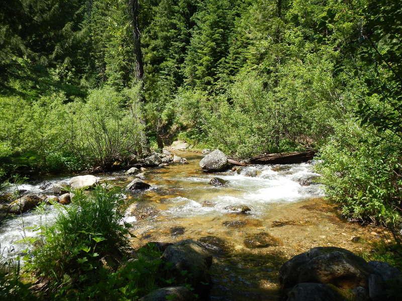 Early Season (July) Creek Crossing