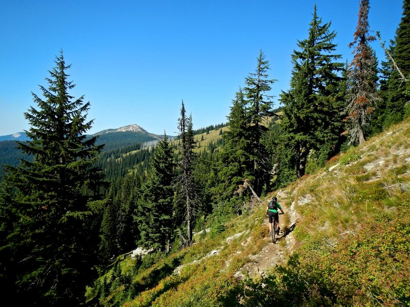 Delaney Creek Trail with Lookout Mountain in the far background.