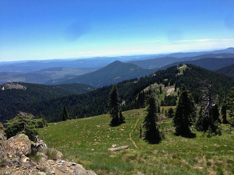 Trail off Widow Mountain