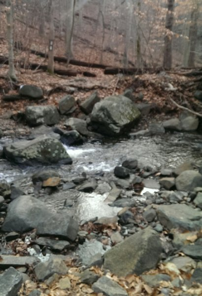 First stream crossing (hike-a-bike). Fun climb after the crossing - rocky, rooty, steep.