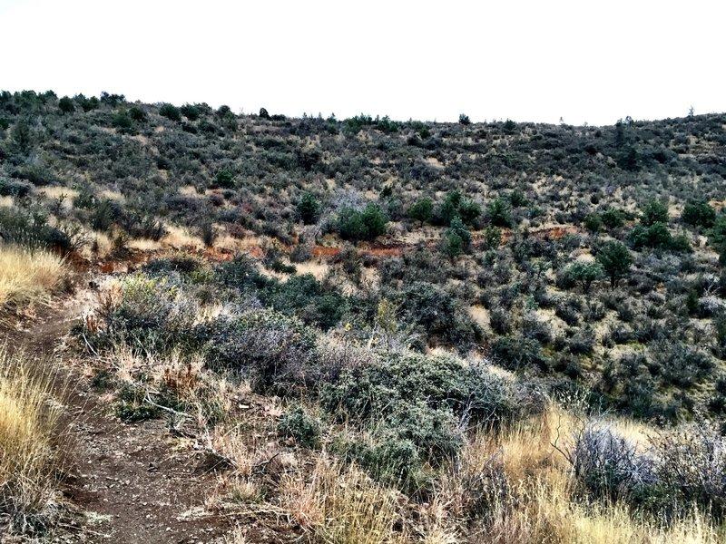 Sundog Ranch Trail